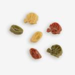 """Are you ready for some Football """"Pasta""""?! Tailgate & Celebrate® Pasta! Every tailgate or game celebration deserves some team spirit! Shop NOW!!!"""