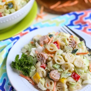 Pasta Slaw | BBQ's favorite side just got better! Pasta, cabbage, peppers, celery, etc plus a sweet and tangy sauce - it's a Wow! } WorldofPastabilities.com