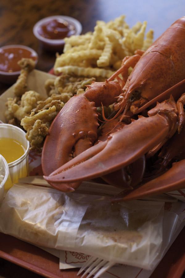 Lobster Pasta Salad | WorldofPastabilities.com